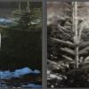 sneeuw toevoegen photoshop workshop-2