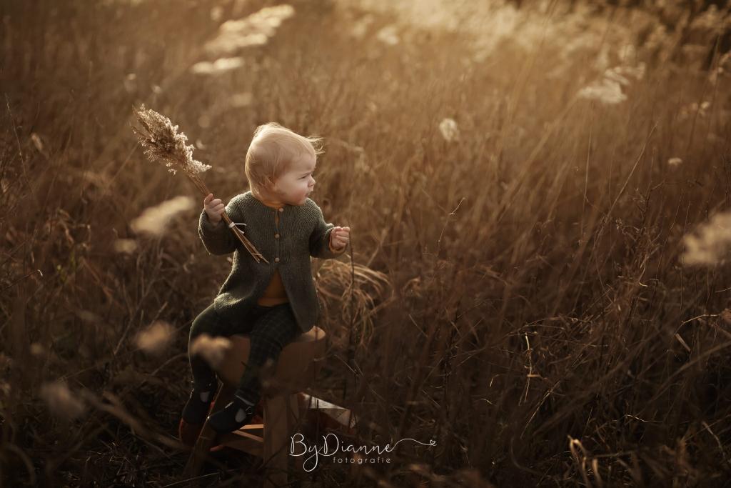 foto van een kindje met een groen vestje aan in een bruin veld